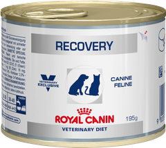 RECOVERY DOG/CAT cans